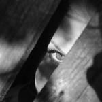 Absconder